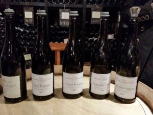 2015-05-20 Wine tasting Beaune