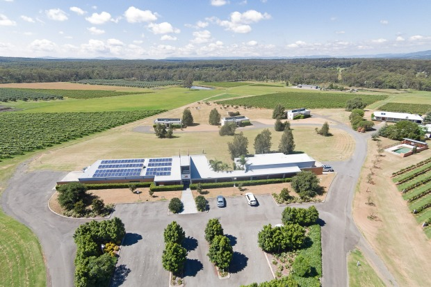 The Adina Vineyard and Olive Grove - Hunter Valley Trophy Listing