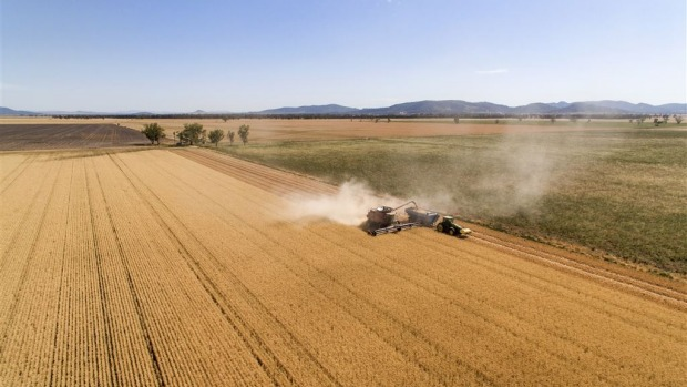 NSW Farm Sales Showing Price Growth: Low Interest Rates, Confidence Fuel Sector