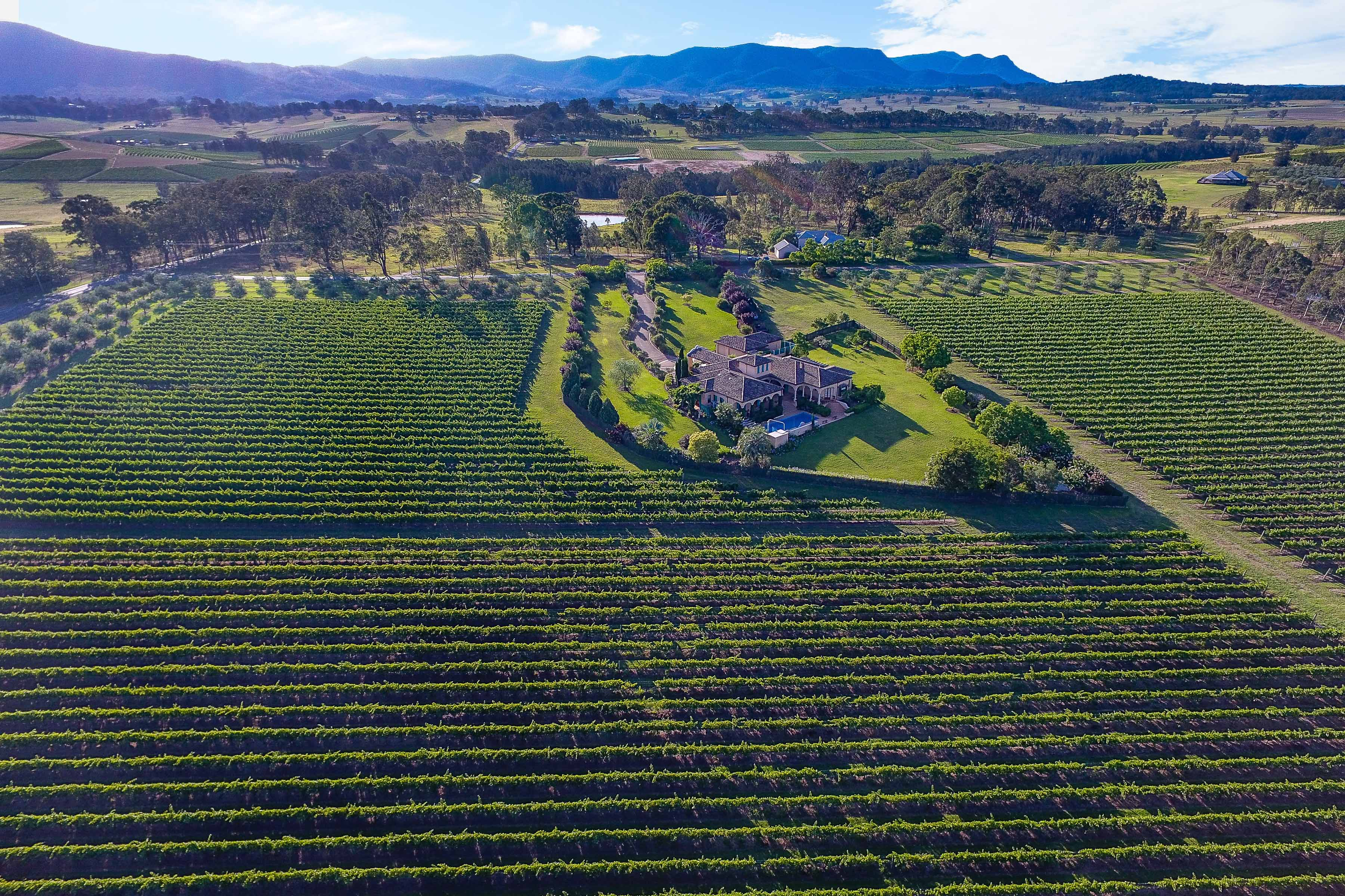 Taiwanese investors snap up winery